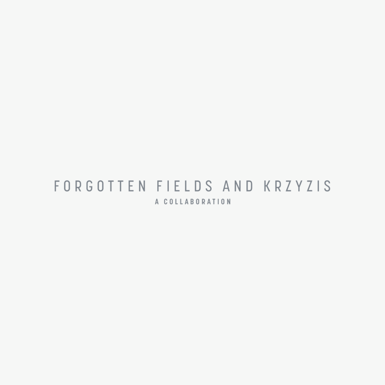Forgotten Fields and Krzyzis collaboration EP