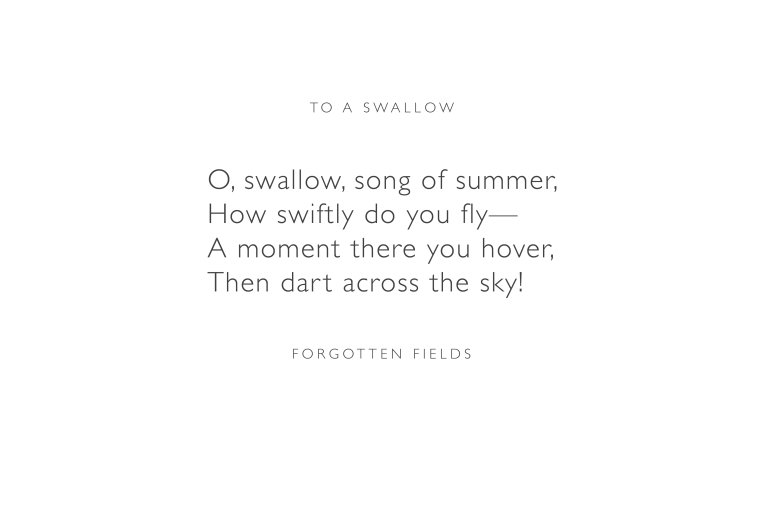 To a Swallow by Forgotten Fields