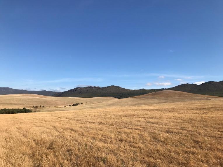 Landscape, 2 January 2018