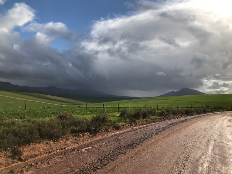A Rainy Day in the Overberg, 19 July 2019. Copyright 2019 Forgotten Fields. All rights reserved.