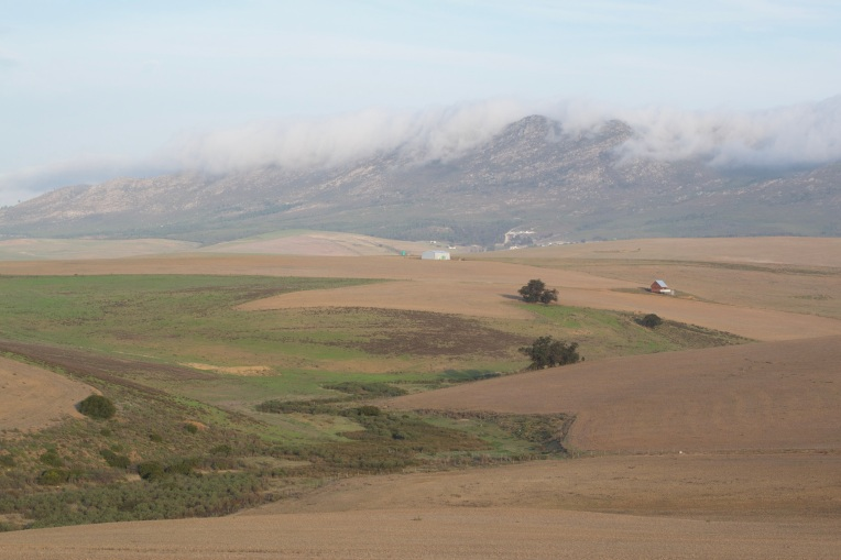 Mist Above Bethoeskloof, 5 June 2020. Copyright 2020 Forgotten Fields. All rights reserved.