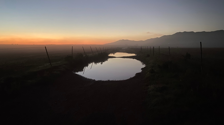 Puddles at Dawn, 19 May 2021. Copyright 2021 Forgotten Fields. All rights reserved.
